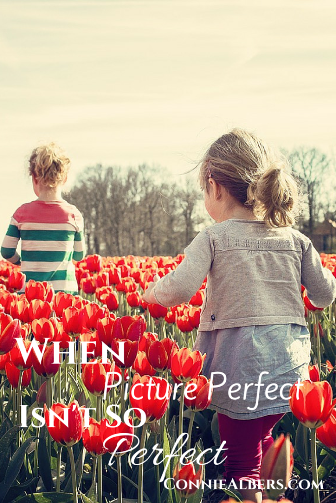 When picture perfect isn't so perfect.  There is no perfect family. ConnieAlbers.com